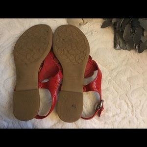 Coach poppy sandals